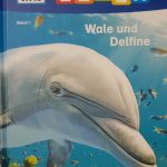 Erstes Lesen - Wale und Delfine