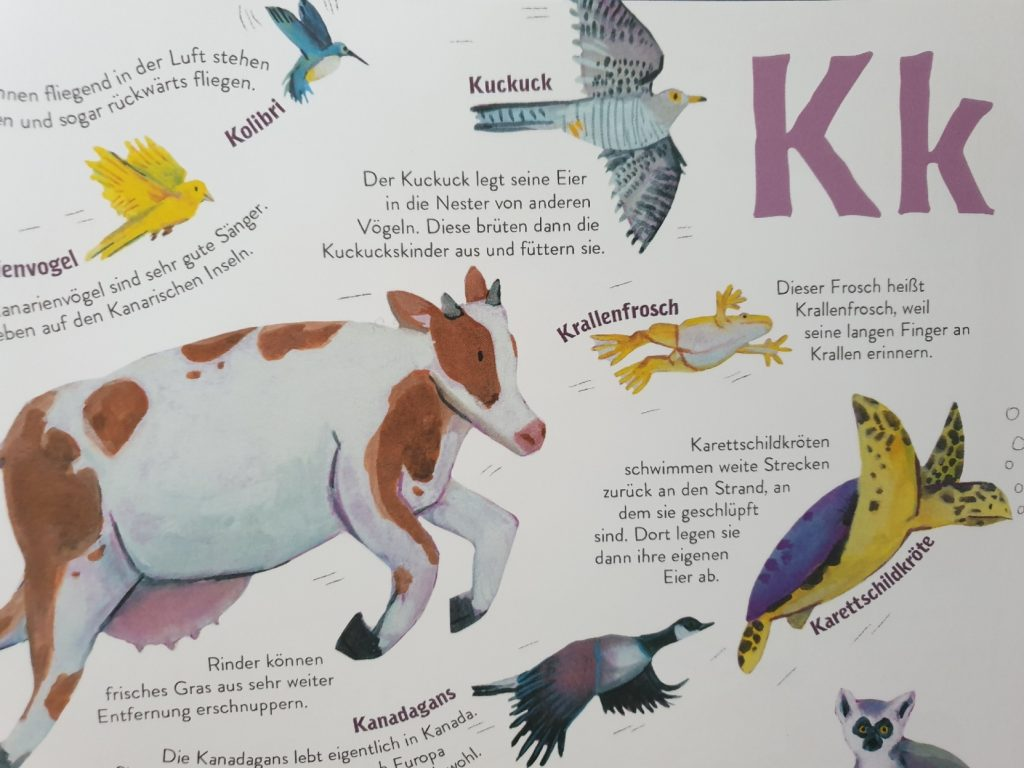 Ein Auszug aus dem Buch Alle Tiere, die ich (noch nicht) kenne
